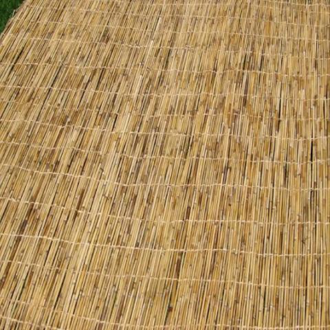 סכך לסוכה במגוון גדלים -גודל 1.60 מטר על 3.1 מטר - 97 שקל.