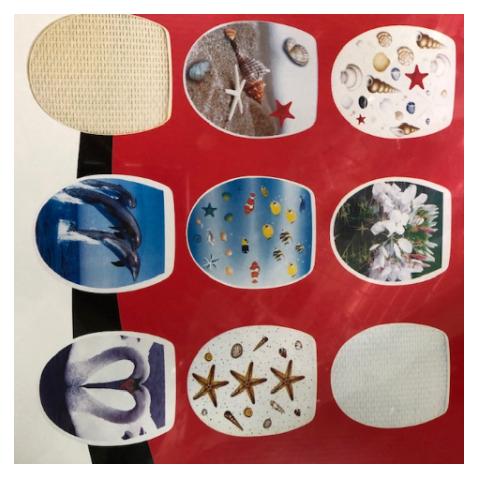 מושב אסלה מצוייר בדוגמאות שונות