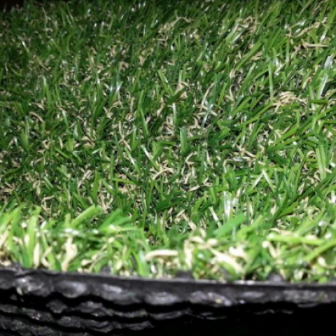 דשא פרומסה